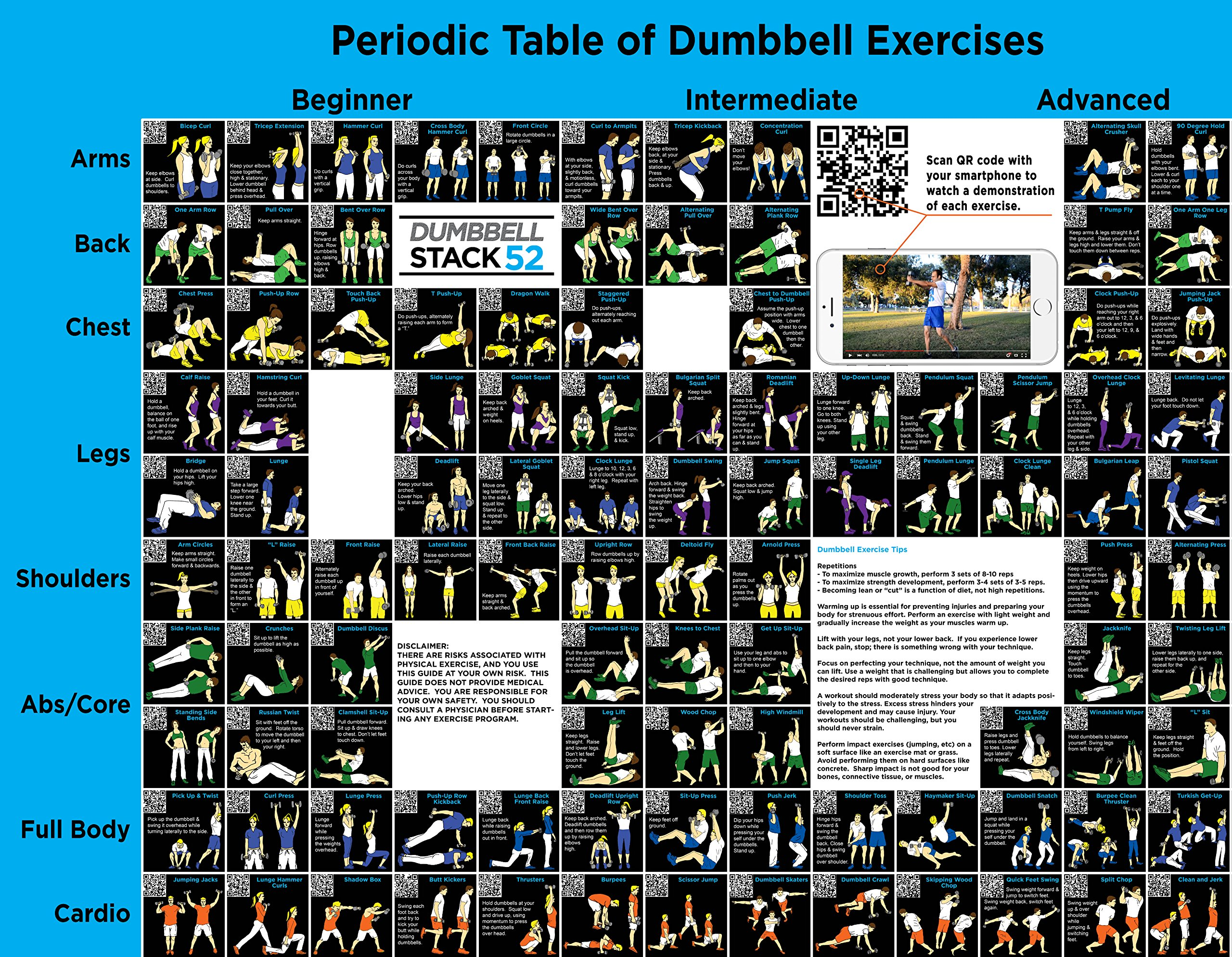 Cheap free motion fitness exercises find free motion fitness get quotations dumbbell exercise poster large periodic table of dumbbell exercises by stack 52 fandeluxe Images