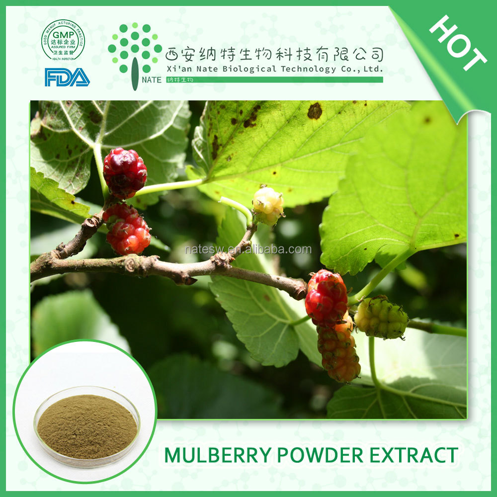 HOT sale product Mulberry Fruit Powder PURE natural