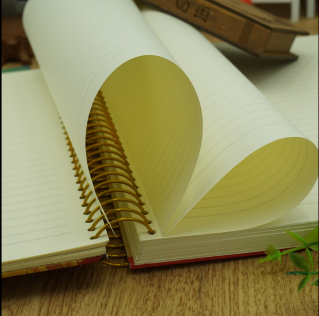 Elegant hardcover golden wire o spiral notebook