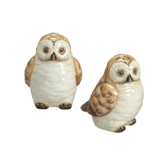 Wise Old Hoot Owls Salt & Pepper Shakers Set S/P