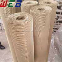 Copper Material Brass Expanded Metal Mesh (ISO9001 Factory)