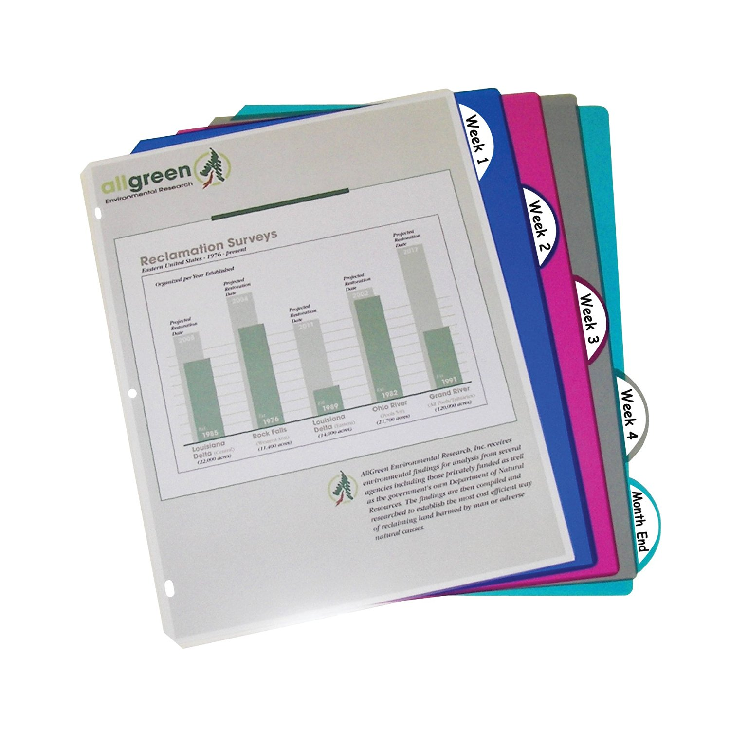 C-Line Biodegradable Colored Tab Poly Index Dividers, Letter Size, Fits 3-Ring Binders, Multi-Color, One 5-Tab Set (05450)