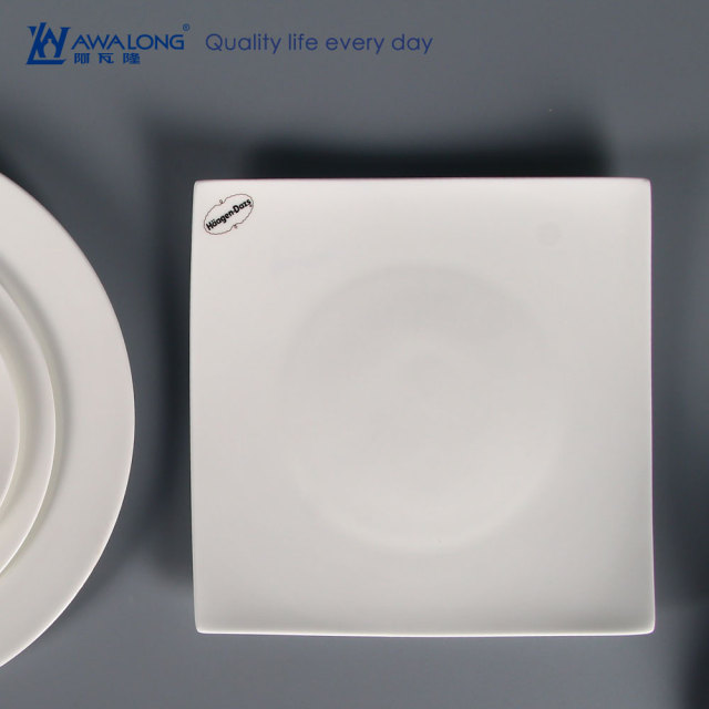 Cheap Custom Printed Bone China Dinner Plate made in China / Square Plate for Dinner : custom made dinner plates - pezcame.com