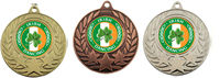 Irish Dance Medals Gold/Silver/Bronze Colors