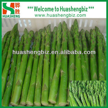 Iqf Frozen Asparagus Spear Green Color
