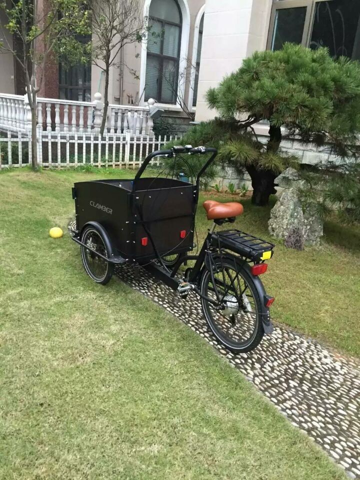 2016 Classic 3 Wheel Electric Cargo Bike/bicycle/dutch Cargo Bike ...