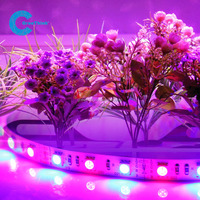Hot sale smd 5050 led strip grow light led with CE,ROHS