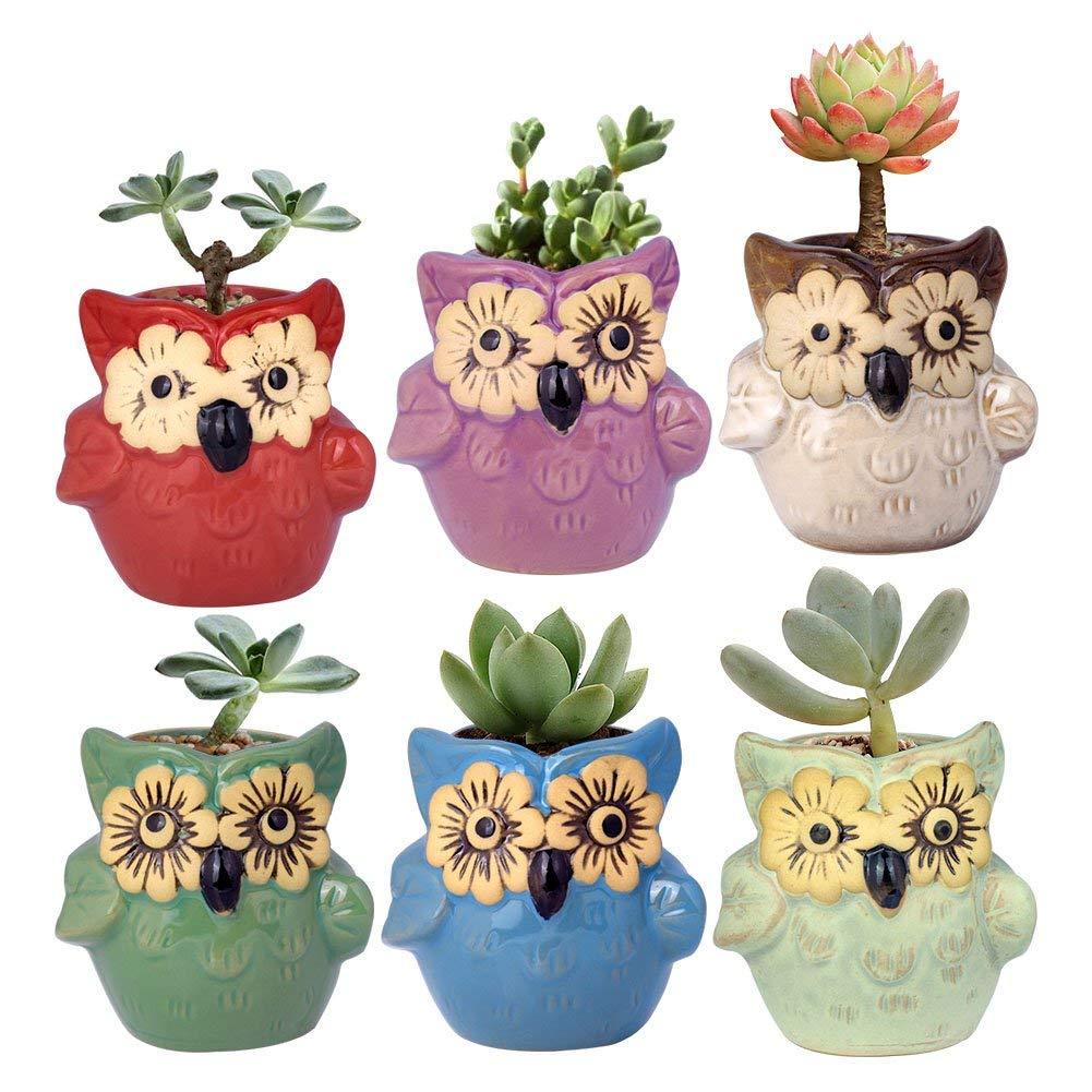 Cheap Glazed Ceramic Pots For Plants Find Glazed Ceramic