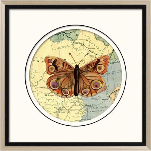 Butterfly picture art