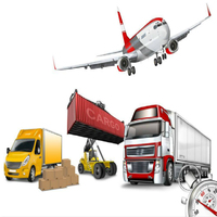 Reliable Freight Forwarder Warehouse Storage Sourcing Dropshipping To New Zealand