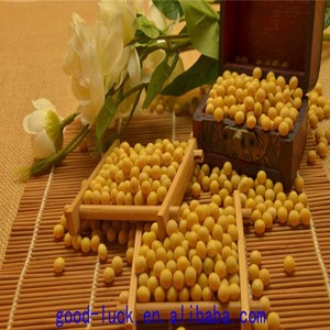 soya beans ,non-GMO,good quality,cheap price