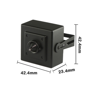 SONY DS CCD 3.7mm Cone Pin-hole Lens Hidden Mini Camera