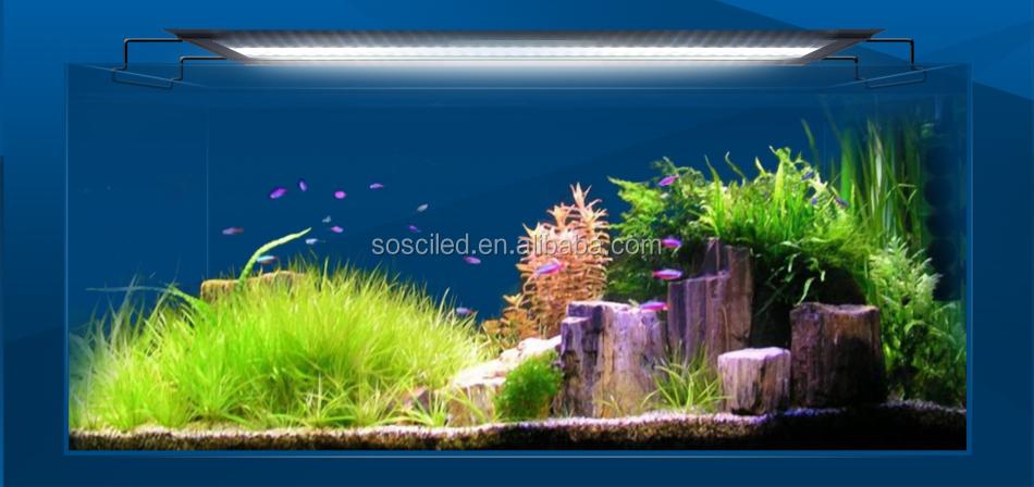 Sanrise Aqua Lover 12 To 60 Inch Freshwater Fish And Aquatic Plant ...