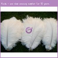 QT00025 28-30 inches white cheap bulk ostrich feathers