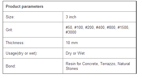 Raizi 3 Inch Resin Polishing Pad For Concrete And Terrazzo Floor View Floor Polishing Pad Raizi Product Details From Dongying Raizi Tool Co Ltd