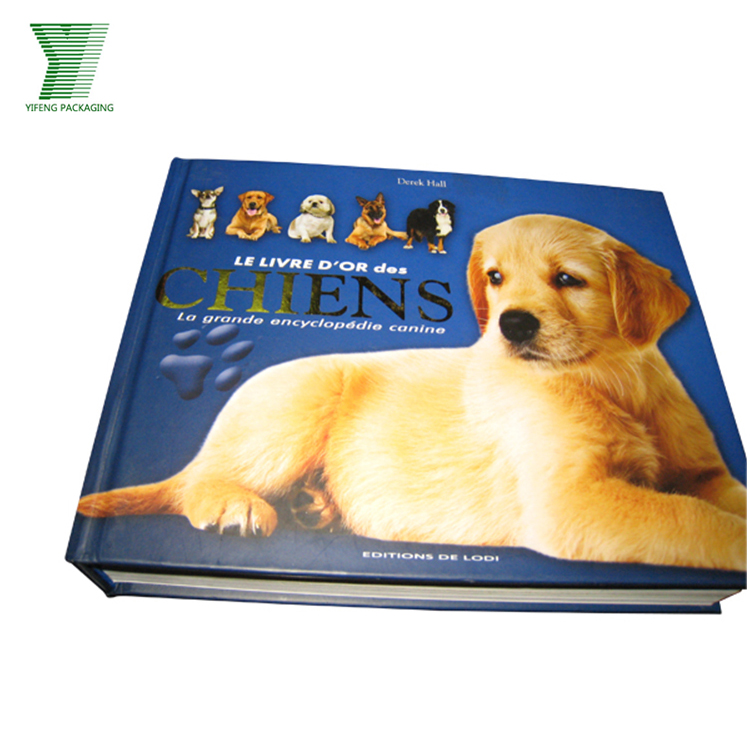 High Quality Custom Design Coloring Hardcover Child Book Magazine Printing