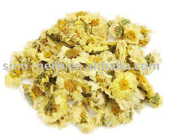 Free sample dried chrysanthemum flower tea china chrysanthemum tea free sample dried chrysanthemum flower tea china chrysanthemum tea buy chrysanthemum teaflower teachrysanthemum flower product on alibaba mightylinksfo