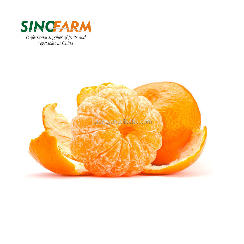 New crop fresh mandarin orange with good quality and cheaper price