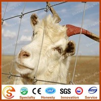 New product widely used practical durable deer farm fence farm electric fence