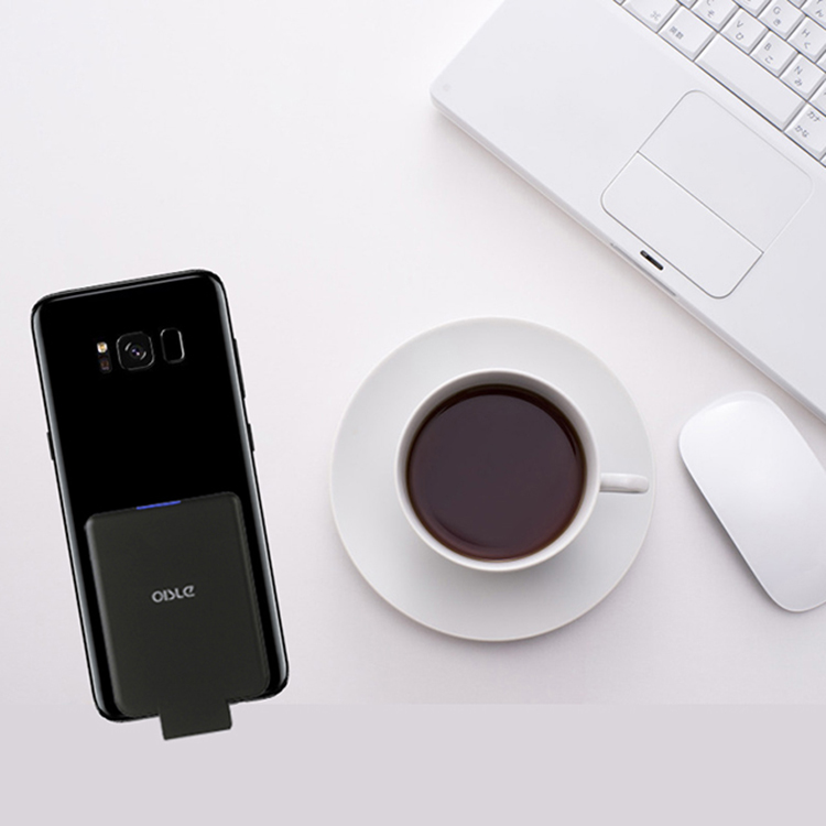 OISLE Quick Charge LED Display Power Bank with Type-C and Micro USB Input for Mobile Phone