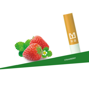 Strawberry Plant Moisturizing and Hydrating Lip Balms Lapiz Labial Cosmeticos Al Por Mayor