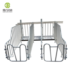 Hog Farming Equipment Sow Gestation Crates Individual Sow Pen Factory