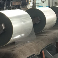 Metallizing Grade Polyester Film for Vacuum Metallizing and Flexible Packaging