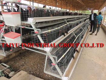 TaiYu Design Modern Chicken Farm Egg Cage