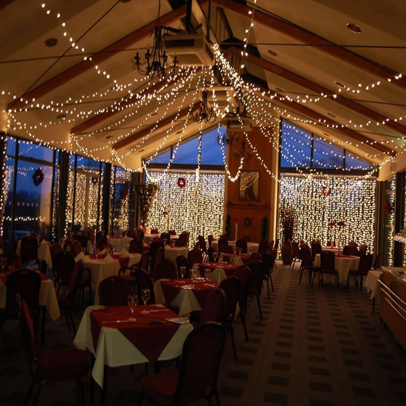 Lighting Canopy Ceiling Fairy Lights For Wedding Hall Coffee Decoration