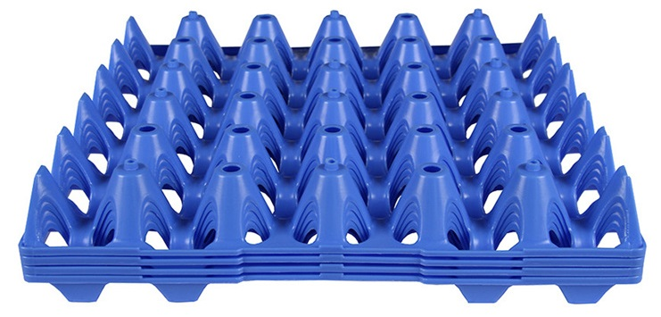 egg tray1.jpg