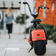 citycoco 2017 electric scooter 1000w