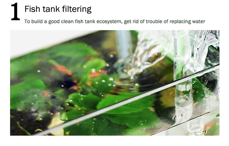 how to clean your fish tank filter