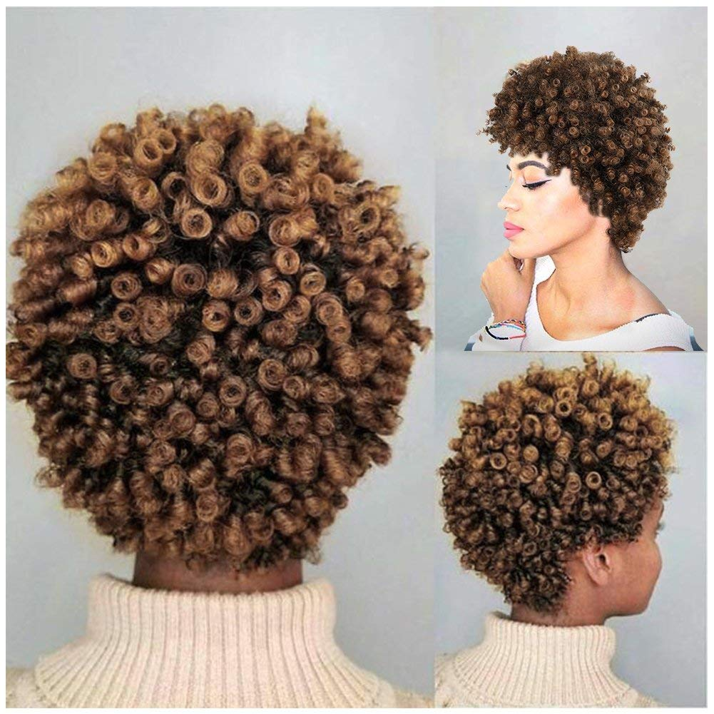 Lady Miranda Afro Kinky Curly Brown Mixed Light Brown Color Short Curly Wig Synthetic Wigs for Women (Brown&Light brown)