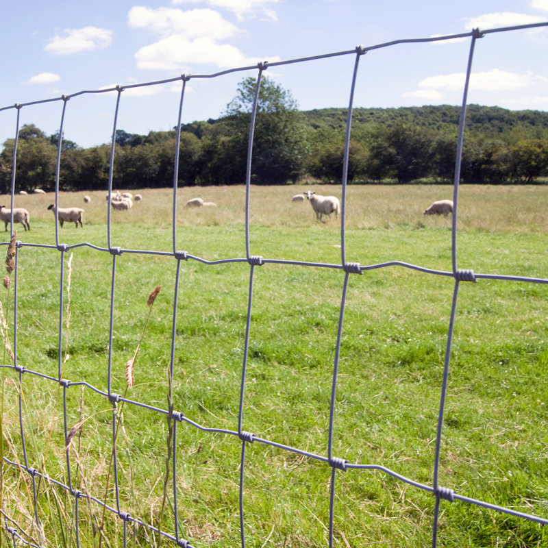 Live Stock Fencing M20//145//15 5ft Heavy Deer Pig Horse Agricultural Fencing