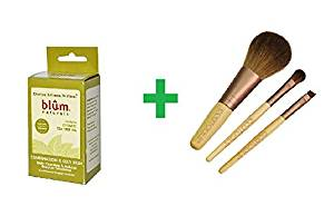 Blum Naturals, Daily Cleansing & Makeup Remover Towelettes, Combination & Oily Skin, Tea Tree, 10 Towelettes Plus EcoTools, Mini Essential Set, 3 Pieces