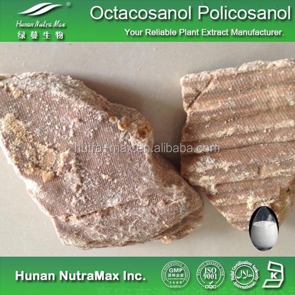 Herbal Medicine Policosanol Powder 90% 95% Octacosanol 10%50%