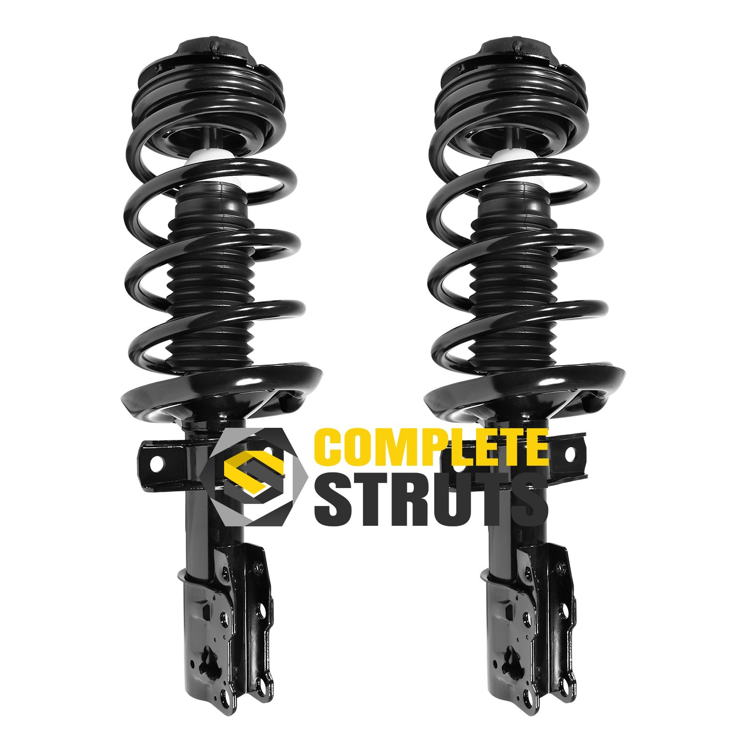 Scitoo 2pcs Front Left and Right Complete Strut Shock Assembly fit 2009-2012 Ford F150 2WD RWD