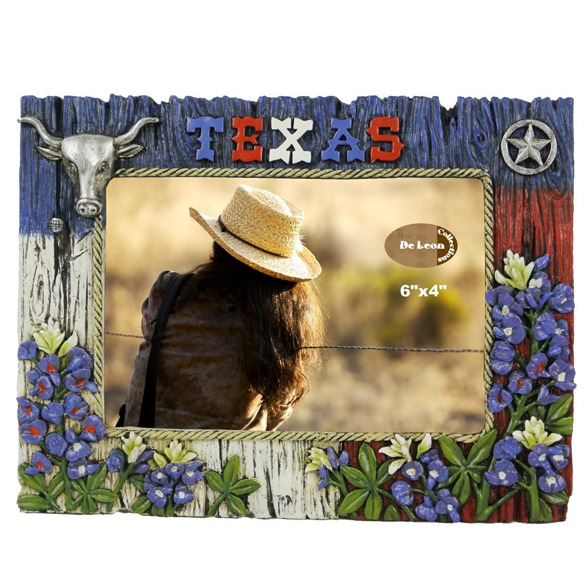 Buy TEXAS FRAME WITH BLUEBONNET, LONGHORN, AND STAR in Cheap Price ...