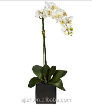 Whole Decorative Artificial Orchid In Vase White Flower
