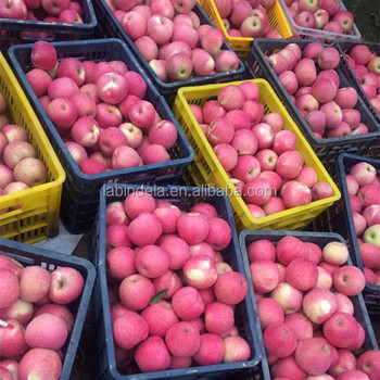 Variety And Pome Fruit Product Type Fresh Apples Fruit/paper ...