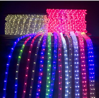 Led Rope Light For Temple Decor Park Decoration Wall Deco Building ...