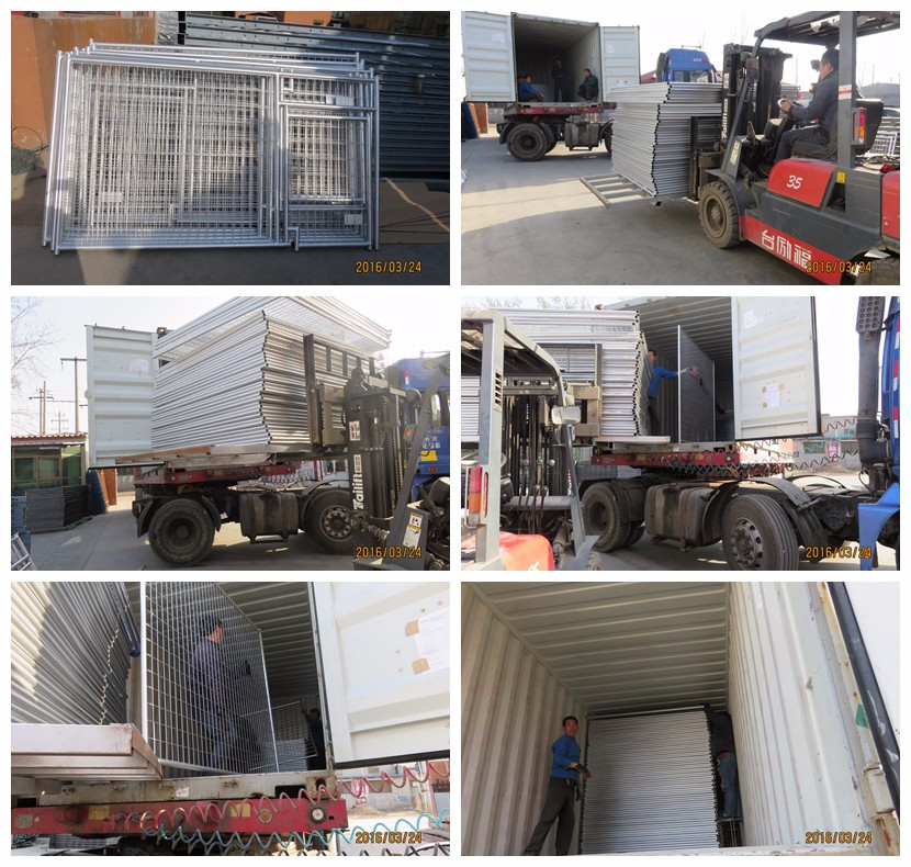 Alibaba dog /pet/kennel/carrier/cage with great price