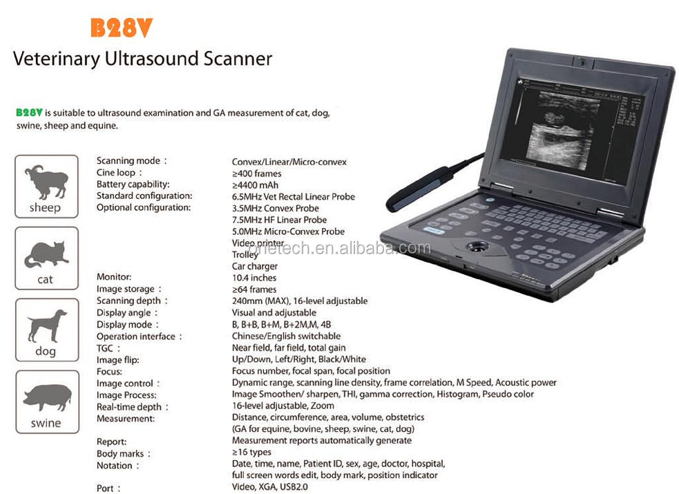 pregnancy ultrasound machine
