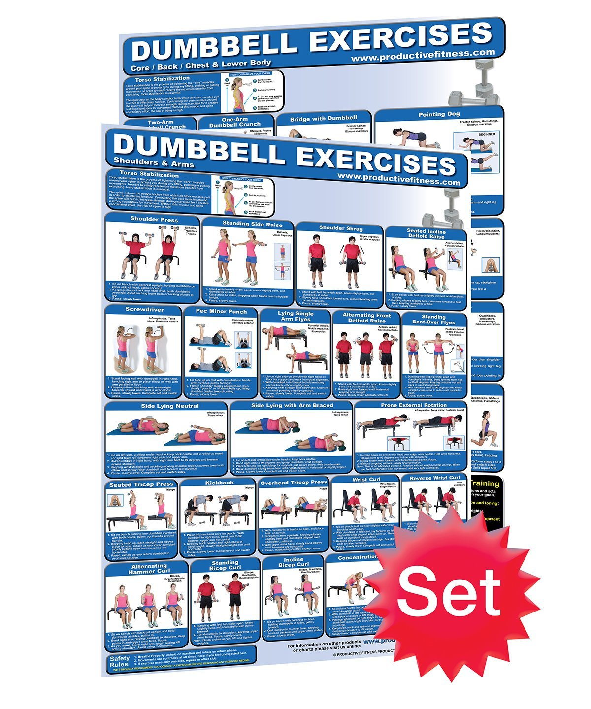 Cheap free motion fitness exercises find free motion fitness get quotations laminated dumbbell posters 2 set created by university accredited fitness experts dumbbell fandeluxe Images