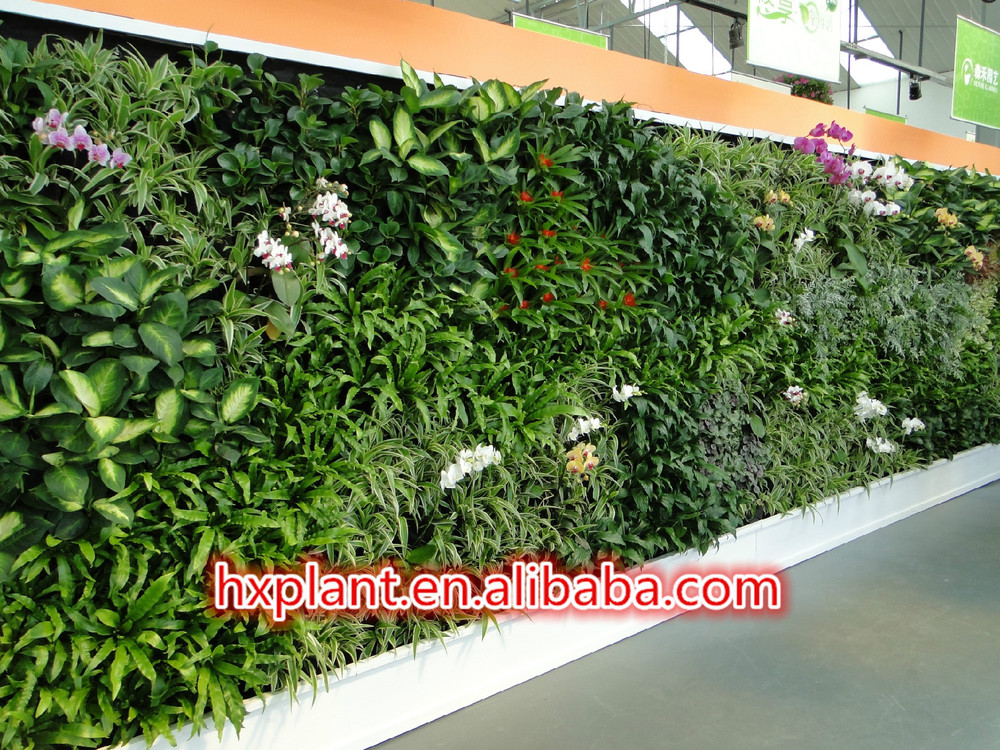 customized indoor green vertical growing wall for hotel fake vertical growing wall plastic. Black Bedroom Furniture Sets. Home Design Ideas