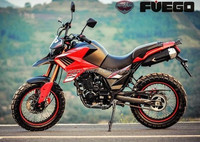Hot Sale 2015 Off Raod Motorcycle, EEC Motorcycle, 250cc 300cc New Designed Tekken Dirt Bike Motorcycle