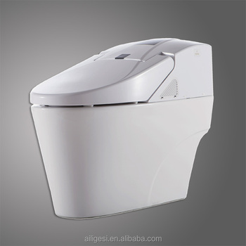 Bathroom Smart Wash Bidet Built In Kohler Toilet ZJS 07J