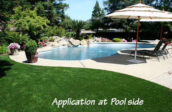 Astro Turf Garden >> Landscape Artificial Grass Turf Anti Slippery Anti Skating Carpet For Swimming Poolside Buy Grass Turf Garden Landscape Astro Turf Synthetic