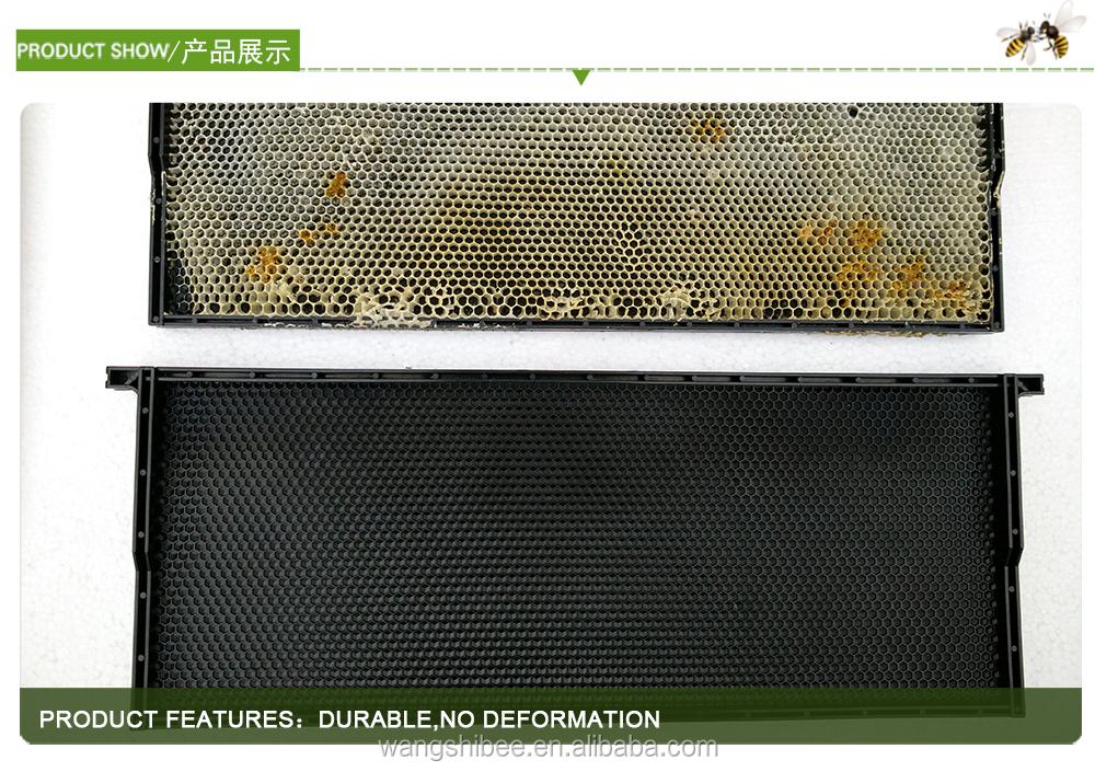 3/4 Langstroth Tiefe Kunststoff Kamm Stiftung Mit Rahmen Bienenzucht ...