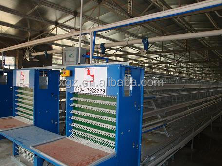 modern low price automatic poultry feeder for broiler and breeder